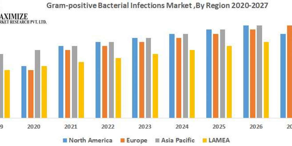 Global Gram-positive Bacterial Infections Market 2019 to 2026