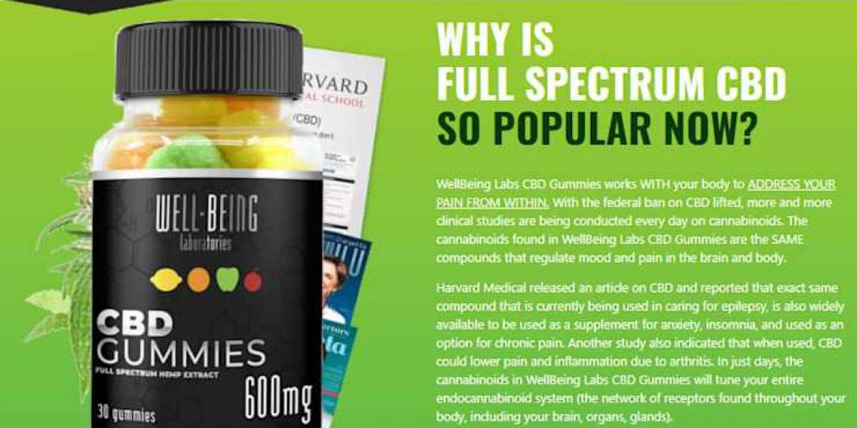 Well Being Labs Reviews - Cost, Free Trial, How To Work?